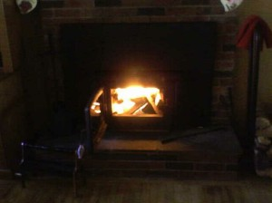 Fireplace insert with fire going